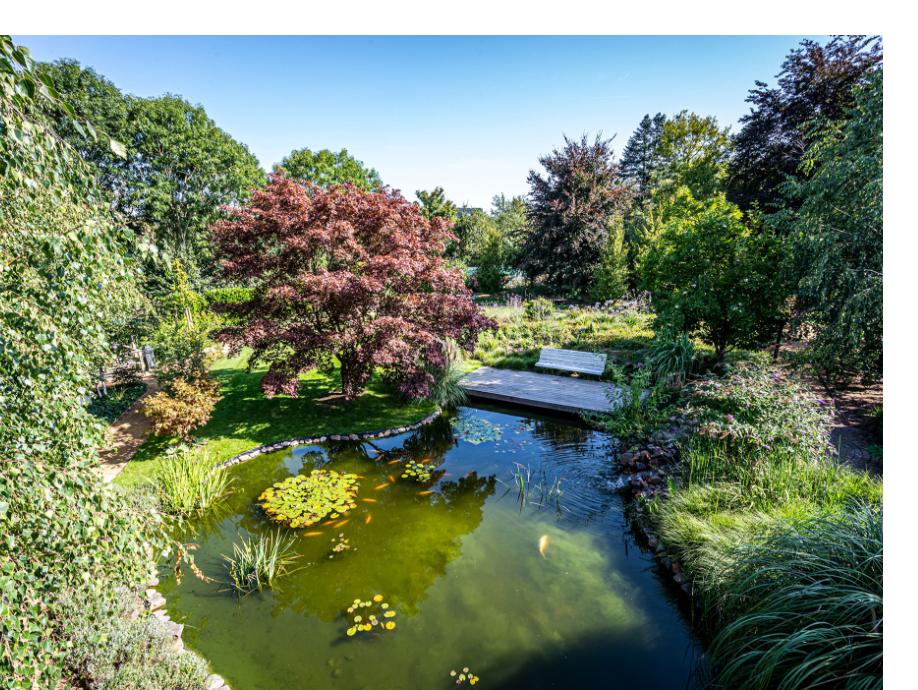 Bovenaanzicht van een vijver die aangelegd is door BTA Groen