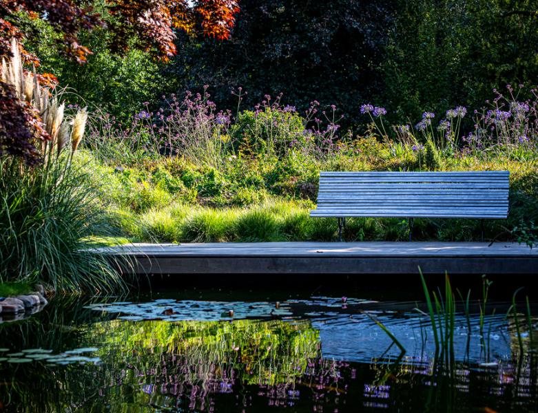 Bankje bij een vijver in een tuin, aangelegd door BTA Groen