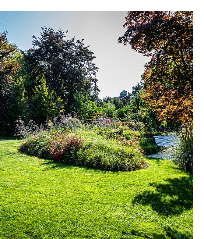 Een prachtige natuurlijk tuin van BTA Groen